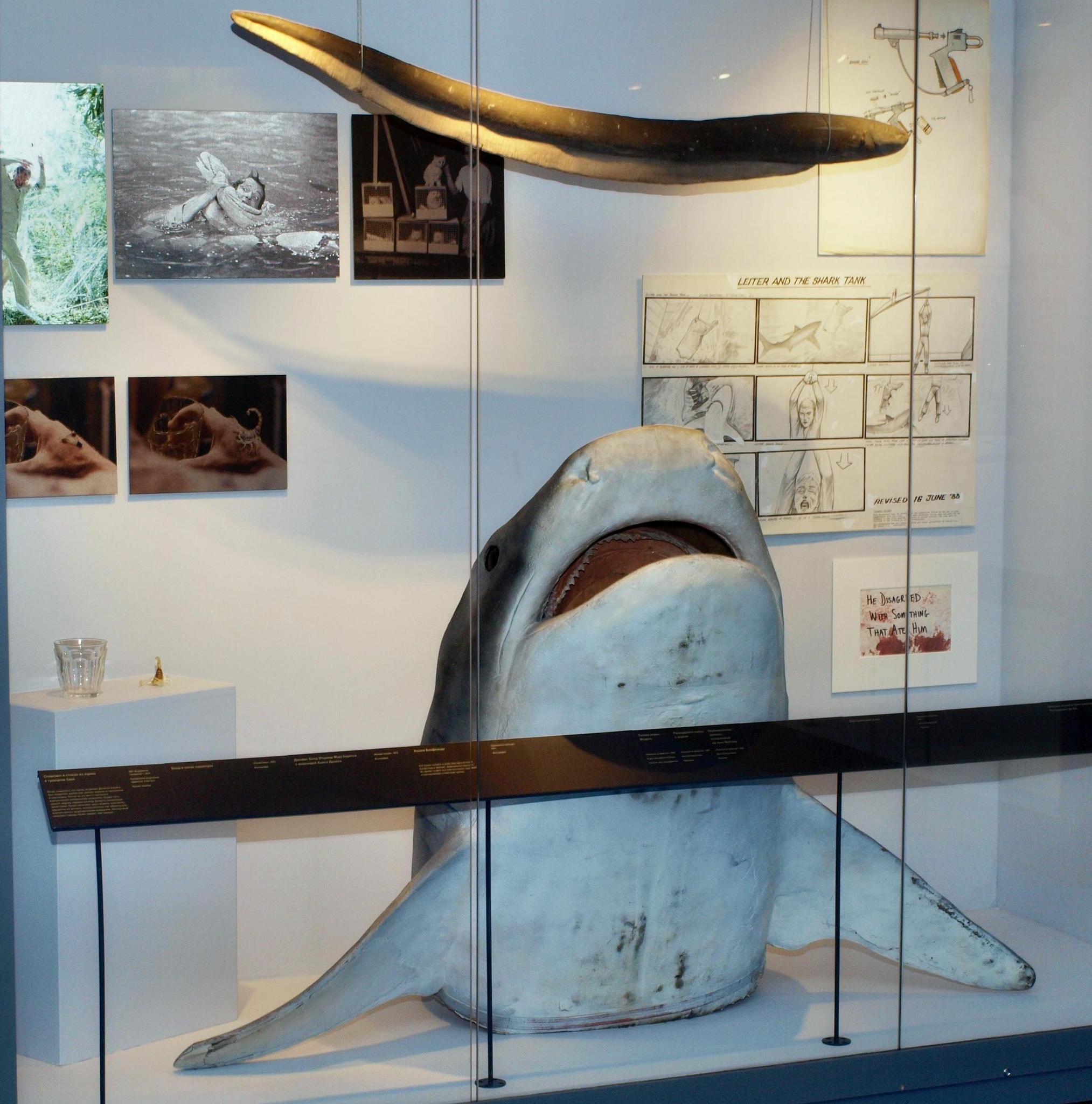 Акула из «Лицензии на убийство». Фотография Малец Михаила Георгиевича